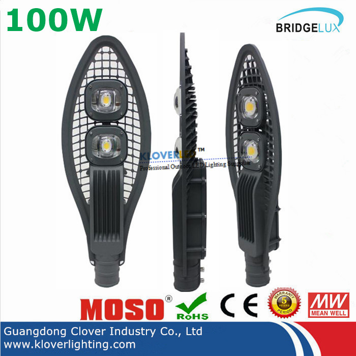 Bridgelux COB 100W LED street light meanwell driver