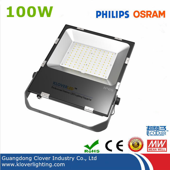Philips 3030 Meanwell driver 100W LED flood lights
