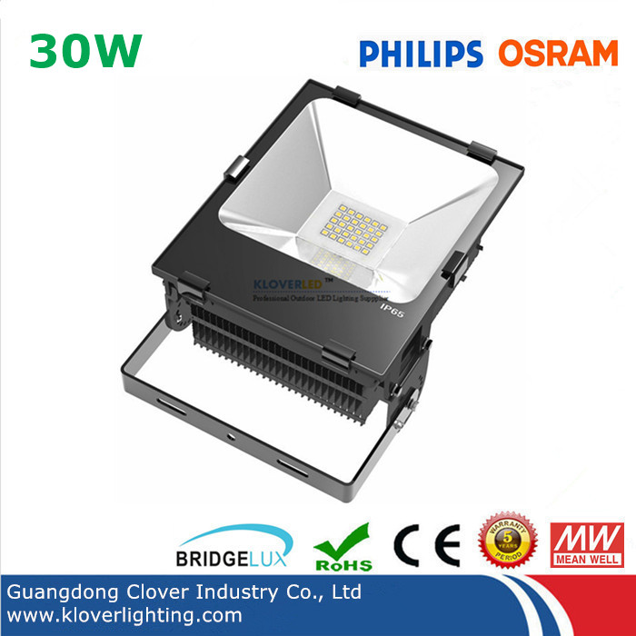 Philips SMD3030 IP65 30W LED flood lights