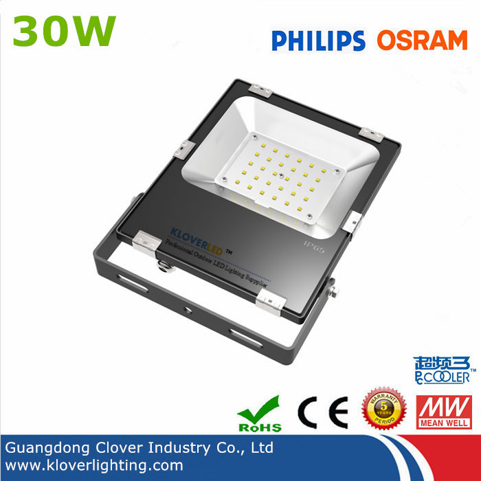 high brightness IP65 30W LED flood lights